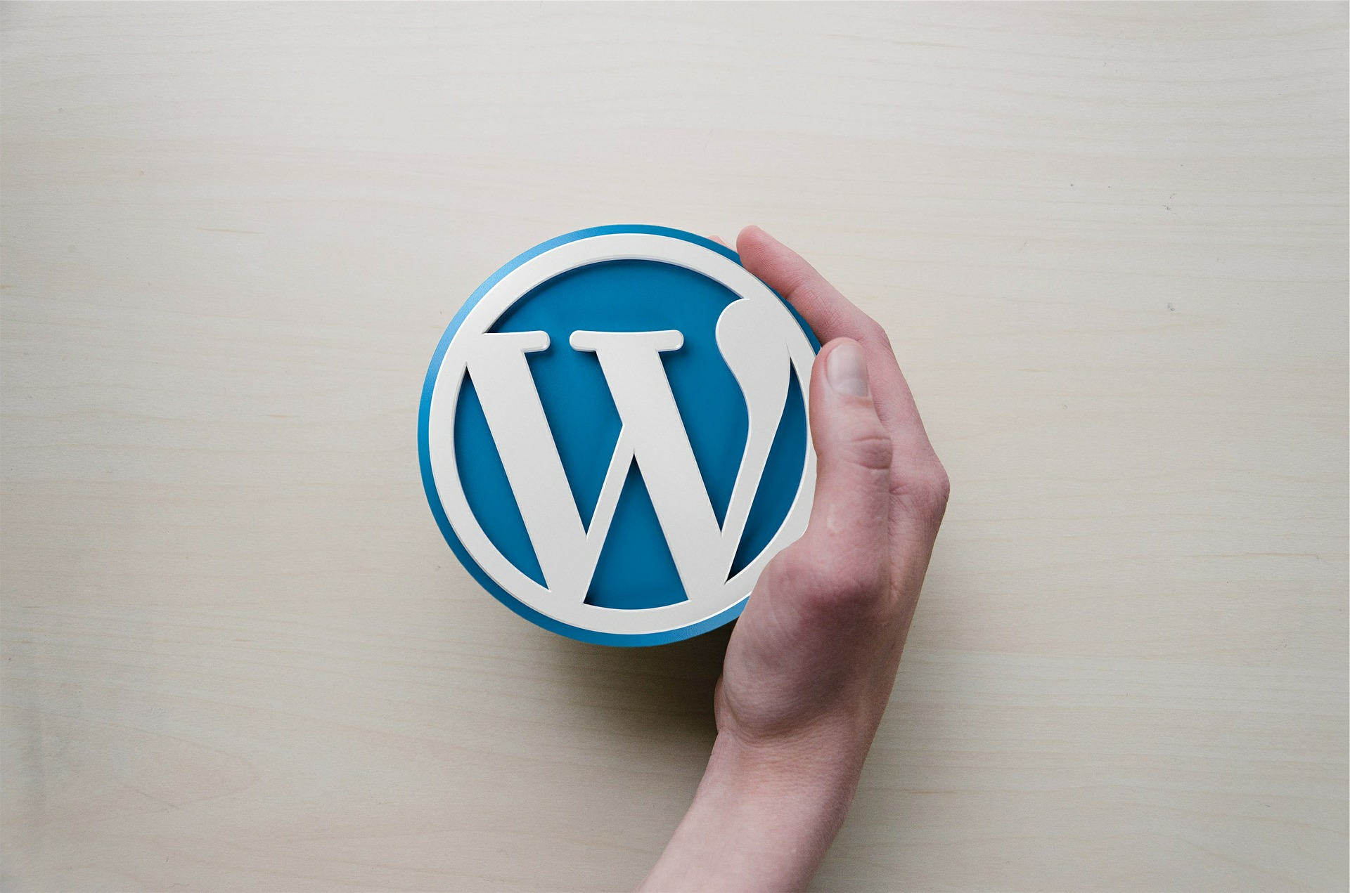WordPress logo and hand